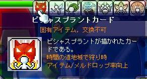 f0095185_116507.jpg