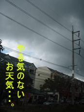 f0144385_1885897.jpg