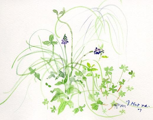 小さな庭から_d0115092_7511011.jpg