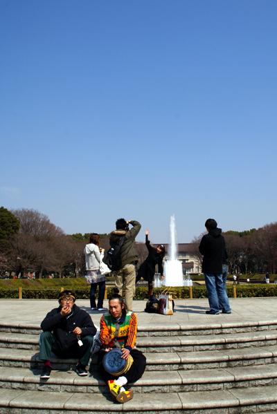 桜が咲ききる前に_d0028499_1061474.jpg