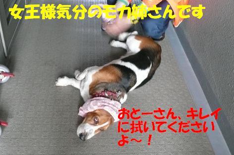 f0121712_17285267.jpg