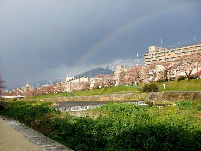 「京都・北山・鴨川の風景&桜便り」_d0133024_23112395.jpg