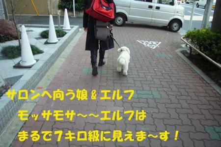 d0070047_17503995.jpg