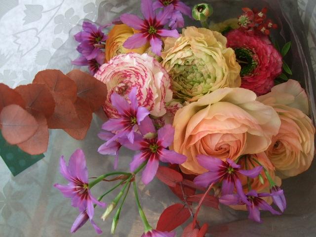 オークリーフ(あでやかな色の花束)_f0049672_15201195.jpg