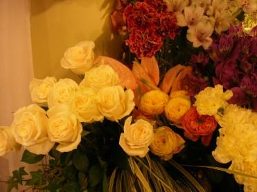 春_c0033678_17363974.jpg