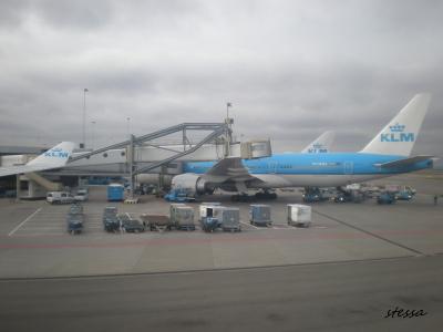 アムステルダム・スキポール空港の風景_d0129786_1463155.jpg
