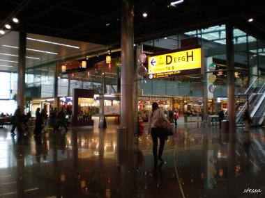 アムステルダム・スキポール空港の風景_d0129786_1501349.jpg