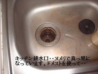 f0031037_1754109.jpg