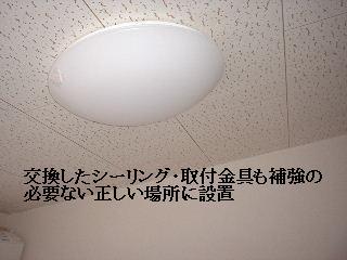 f0031037_1757586.jpg