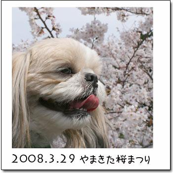 b0024183_23425368.jpg