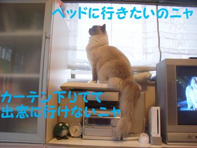 f0014893_20121761.jpg