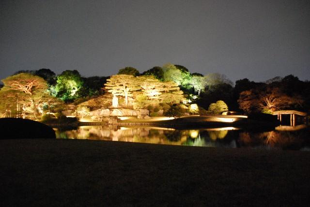 六義園の夜桜 2/2_e0019200_22114215.jpg