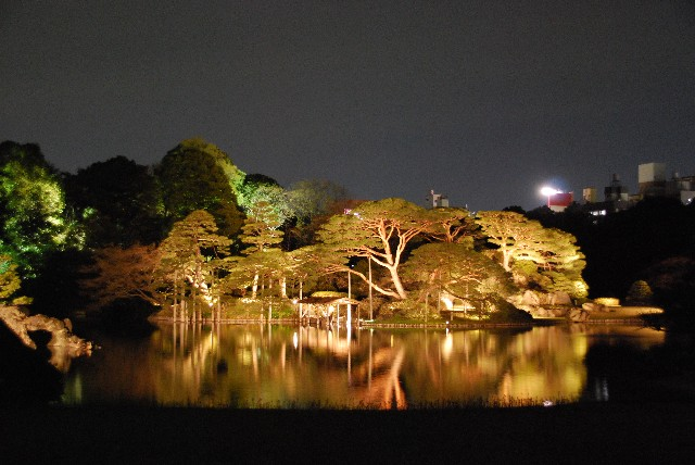 六義園の夜桜 2/2_e0019200_22122264.jpg