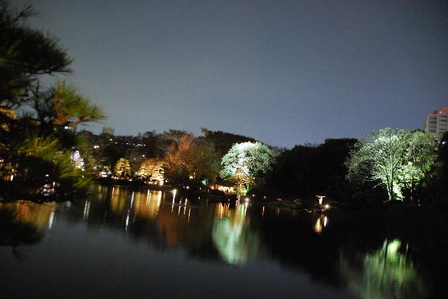 六義園の夜桜 2/2_e0019200_22123528.jpg