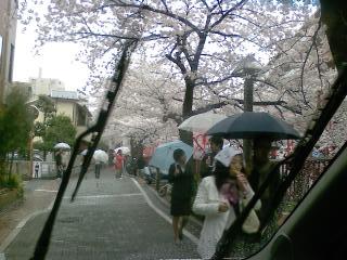 目黒川の桜♪_d0091909_17252391.jpg