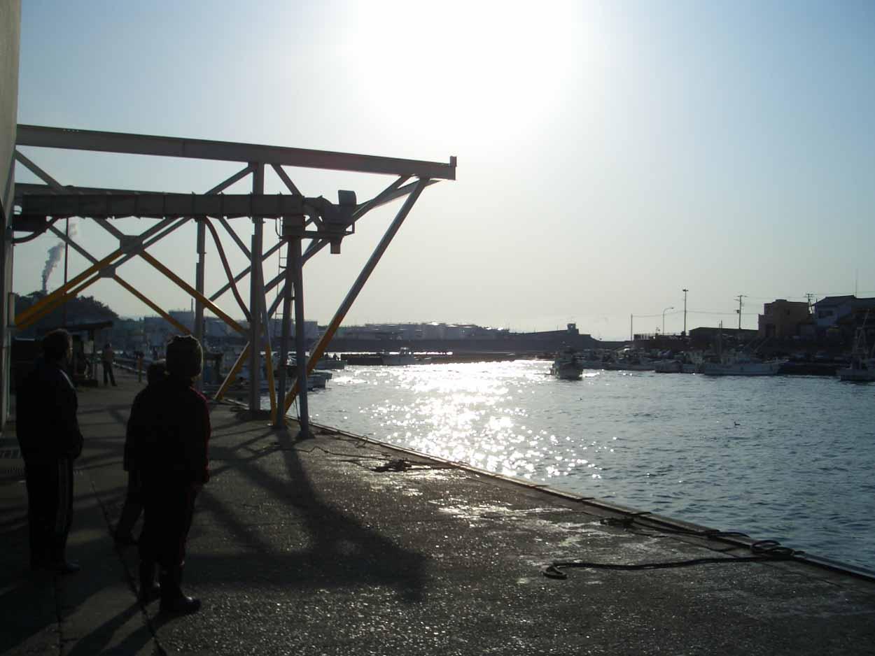 富士のシラスは日本一!_f0141310_23492140.jpg