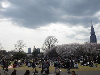 新宿御苑_c0025217_11221084.jpg