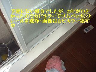 f0031037_1515524.jpg