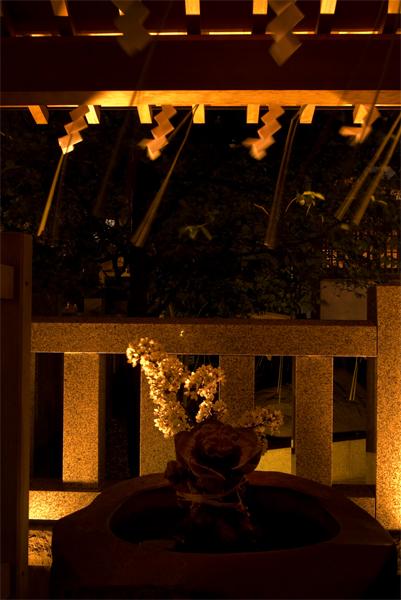 牛天神の夜桜_a0003650_23163956.jpg