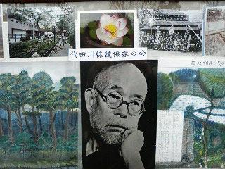 代田緑道とお花見_c0092197_23747100.jpg