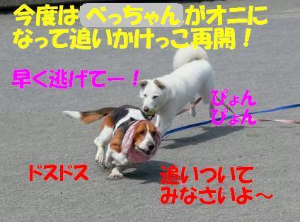 f0121712_14394331.jpg
