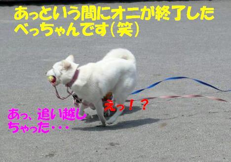 f0121712_14395159.jpg