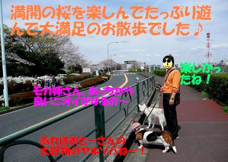 f0121712_144018.jpg