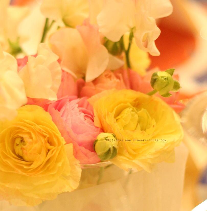 夢  カラーの花で _a0042928_2332495.jpg