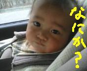 d0064329_11643.jpg