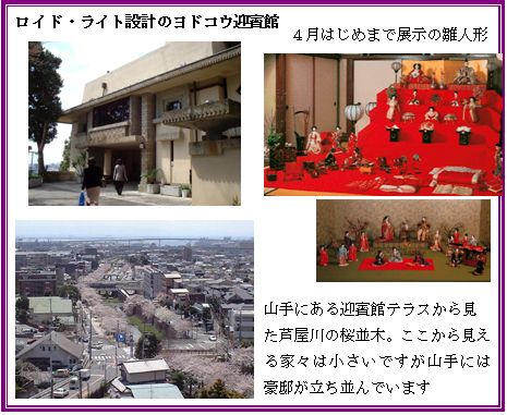 京阪神の桜ポイント_a0084343_954893.jpg