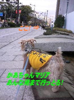 d0013645_171245.jpg