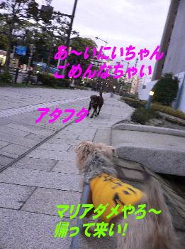 d0013645_17135325.jpg