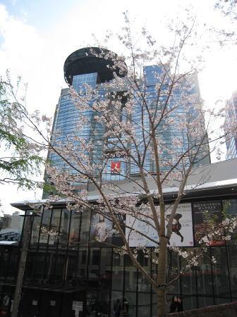 ミニミニ東京見物_c0157047_2310436.jpg