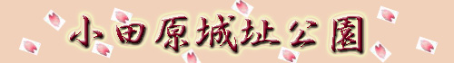 c0096348_16153416.jpg