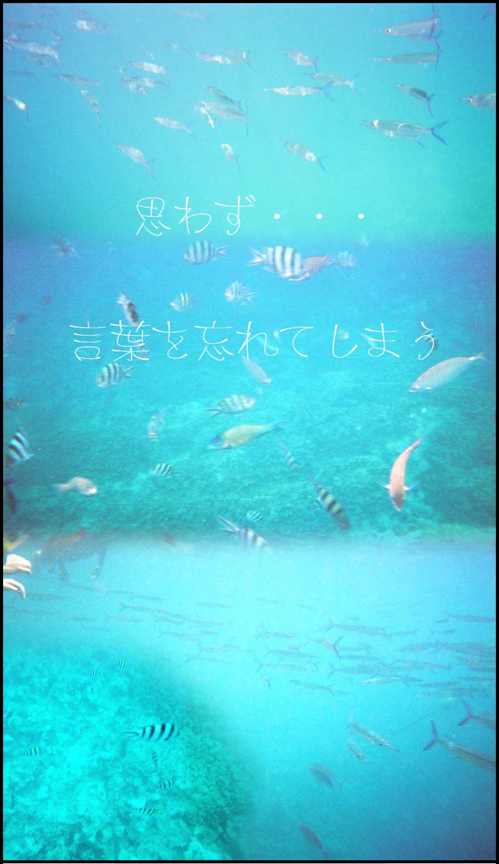 グァム→3/20☆スヌーバで海の中。。。_f0119369_229597.jpg