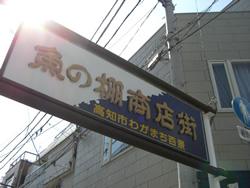 2008春 高知滞在記&おきゃくレポート(3月10日前編) _a0053772_22367100.jpg