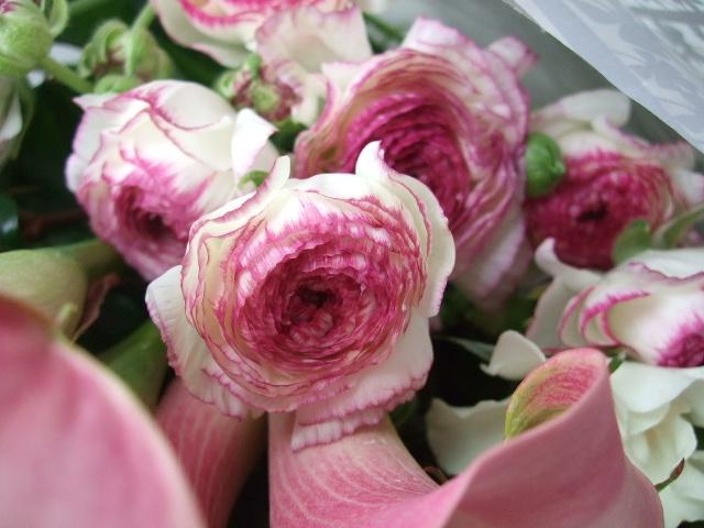 オークリーフ(先生へ贈る花束)_f0049672_13201515.jpg