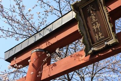 奈良・京都桜旅行『奈良 氷室神社編』_d0148187_2124091.jpg