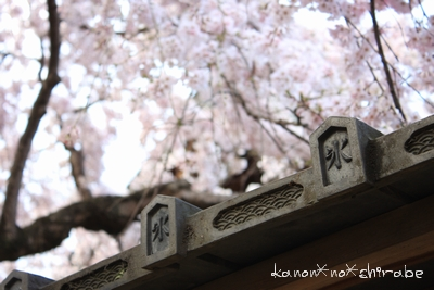 奈良・京都桜旅行『奈良 氷室神社編』_d0148187_21261215.jpg