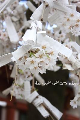 奈良・京都桜旅行『奈良 氷室神社編』_d0148187_2127477.jpg