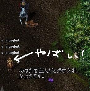 b0096491_316038.jpg