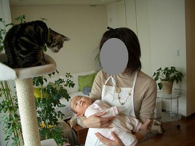産まれました♪_b0107003_1821884.jpg