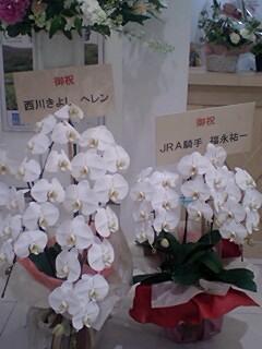 開店祝いの花_c0022820_0115558.jpg