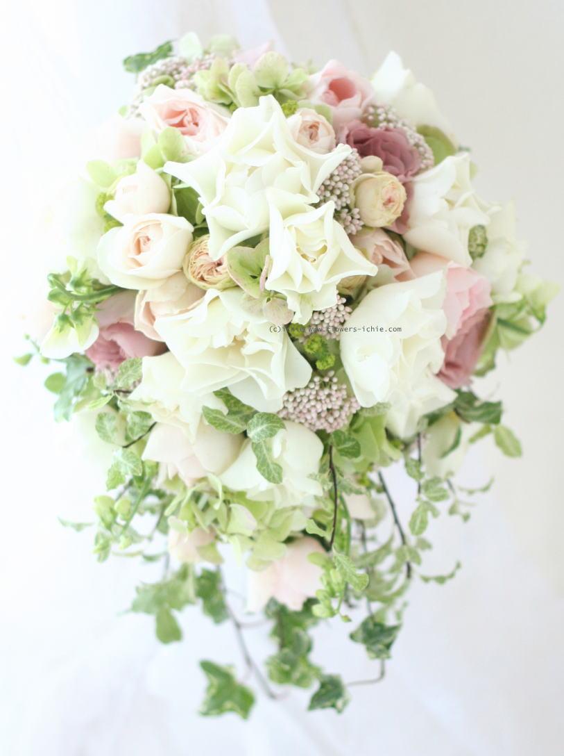 春_a0042928_2243073.jpg