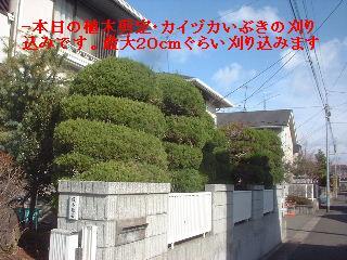 f0031037_1652490.jpg