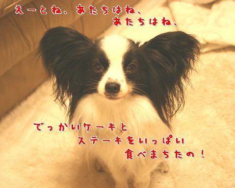 d0013149_04378.jpg