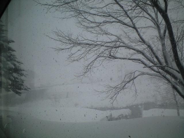 大雪っ(^O^)/_c0151965_13403798.jpg