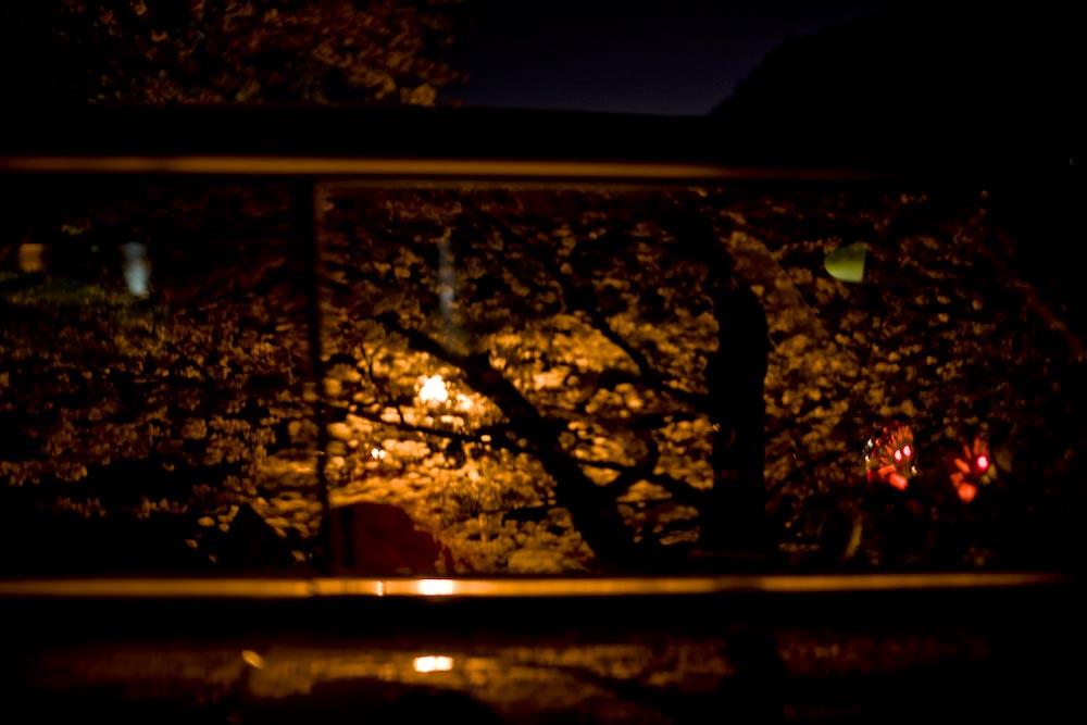 夜桜2_c0150383_22295969.jpg