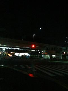 恋_a0075684_21475954.jpg