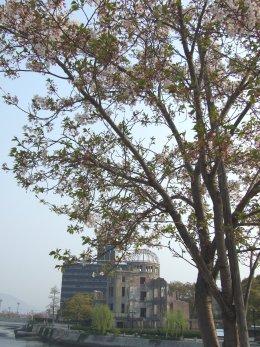 4月です。桜です。(^^)_b0078597_1471726.jpg